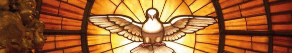 La colombe du Christ